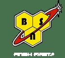 logo_bsn