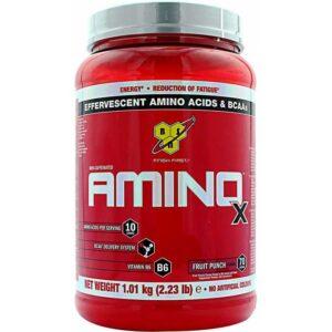 Amino X (1010g)