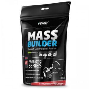 VP_Lab_Mass_Builder_5kg000000831_1-500x500
