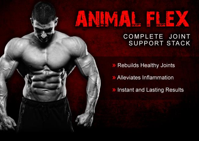 animalflex-banner