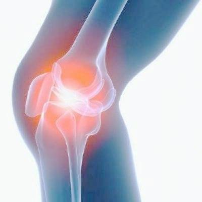 Добавки для защиты суставов
