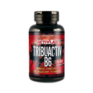 Тестобустер ActivLab Tribuactiv B6 (90 caps)